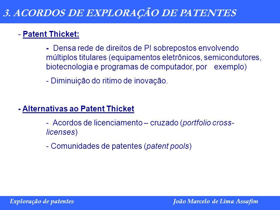 Marco Túlio de Barros e Castro Exploração de patentesJoão Marcelo de Lima Assafim 3. ACORDOS DE EXPLORAÇÃO DE PATENTES - Patent Thicket: - Densa rede