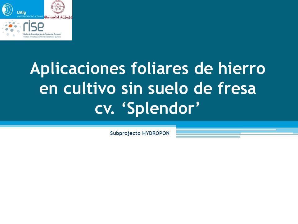 Horto do Campus La Rábida, ETSI, Universidade do Huelva Local do ensaio Variedad de día corto.