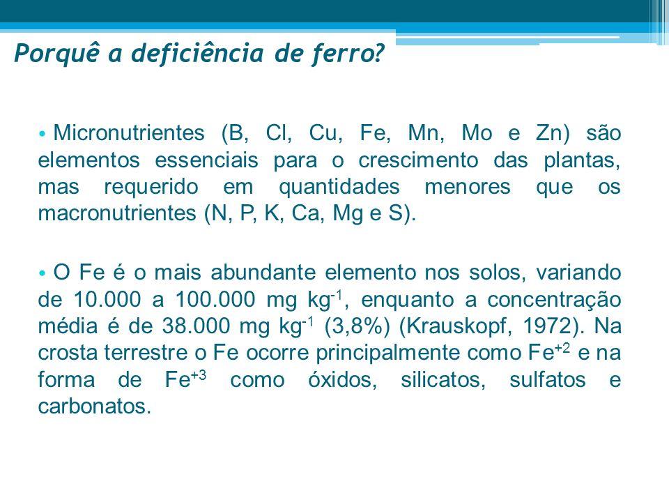 Delineamento experimental Parte I – Indução de sintomas Retirou-se o Fe da solução de rega - plantas com sintomas de clorose férrica