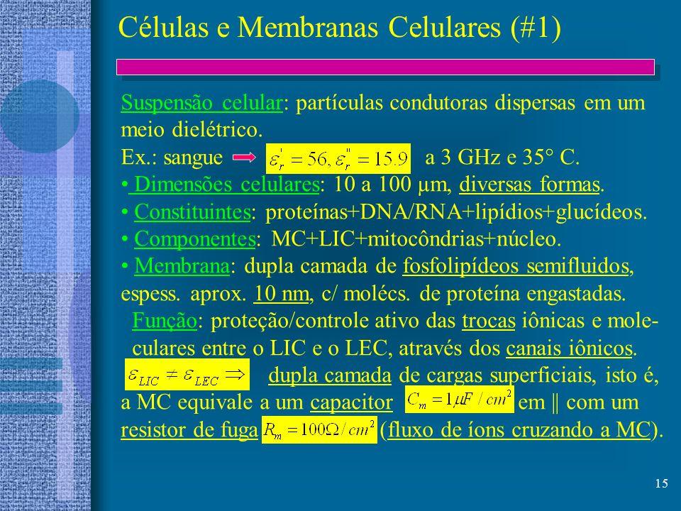 15 Células e Membranas Celulares (#1) Suspensão celular: partículas condutoras dispersas em um meio dielétrico. Ex.: sangue a 3 GHz e 35° C. Dimensões