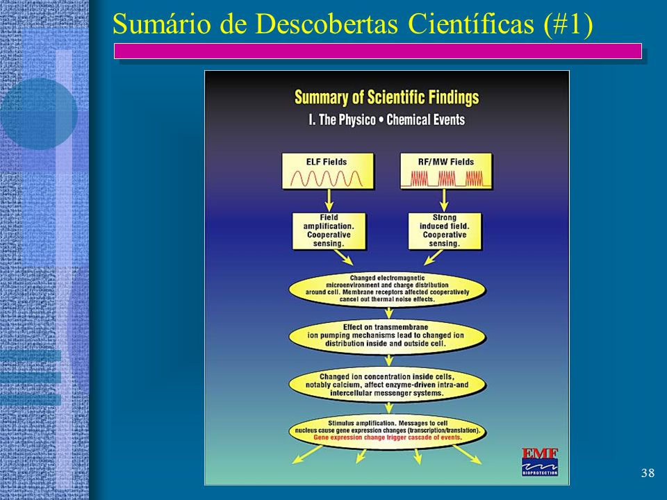 38 Sumário de Descobertas Científicas (#1)