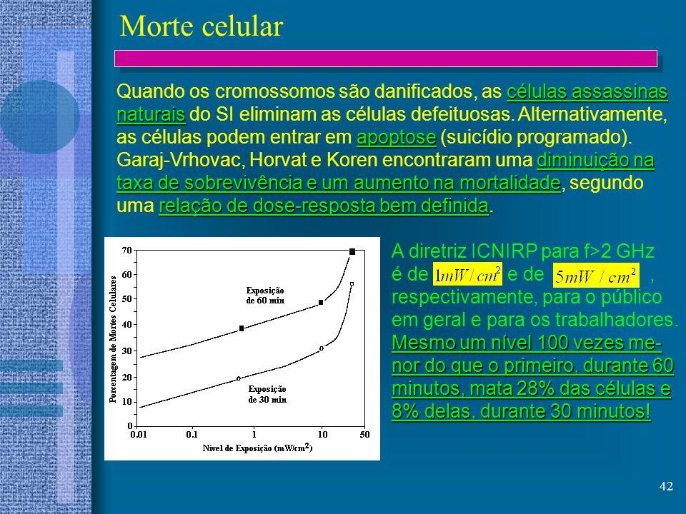 42 Morte celular células assassinas Quando os cromossomos são danificados, as células assassinas naturais naturais do SI eliminam as células defeituos