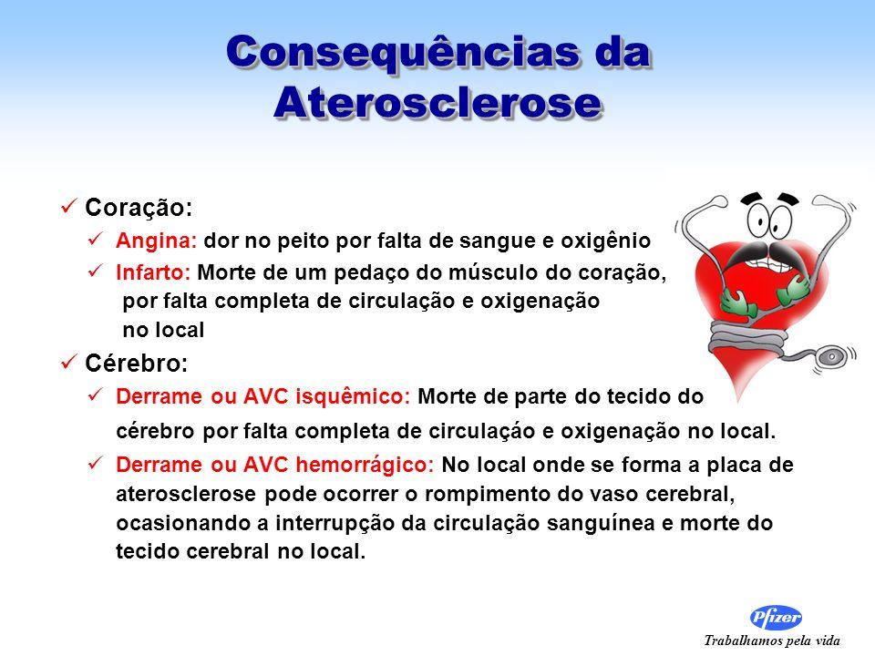 Trabalhamos pela vida Consequências da Aterosclerose Coração: Angina: dor no peito por falta de sangue e oxigênio Infarto: Morte de um pedaço do múscu