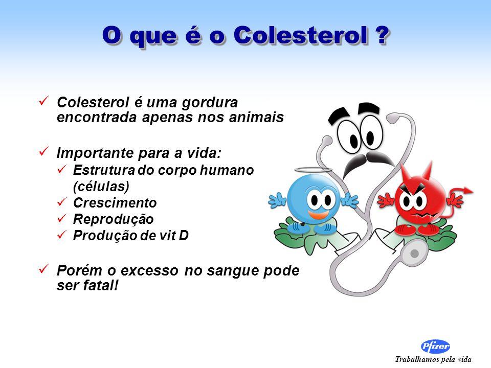 Trabalhamos pela vida O que é o Colesterol ? Colesterol é uma gordura encontrada apenas nos animais Importante para a vida: Estrutura do corpo humano