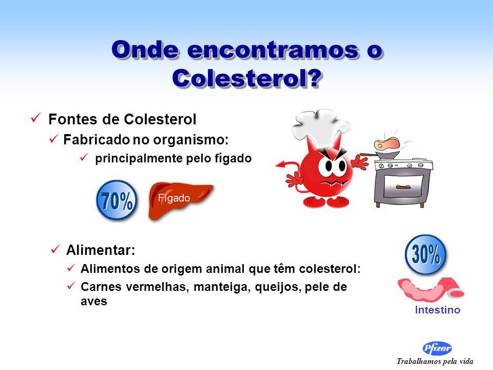 Trabalhamos pela vida Onde encontramos o Colesterol? Fontes de Colesterol Fabricado no organismo: principalmente pelo fígado Alimentar: Alimentos de o