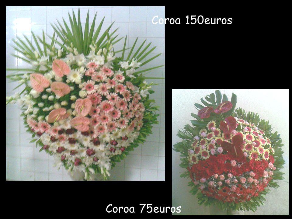 Coroa 1,20 de diâmetro 100euros Coroa 1,20 de diâmetro 100euros
