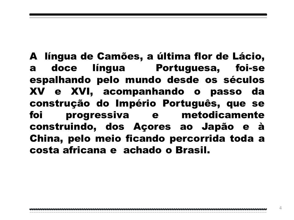 3 Introdução Neste diaporama abordaremos a problemática do Novo Acordo Ortográfico da Língua Portuguesa, na perspetiva da evolução ortográfica do Port