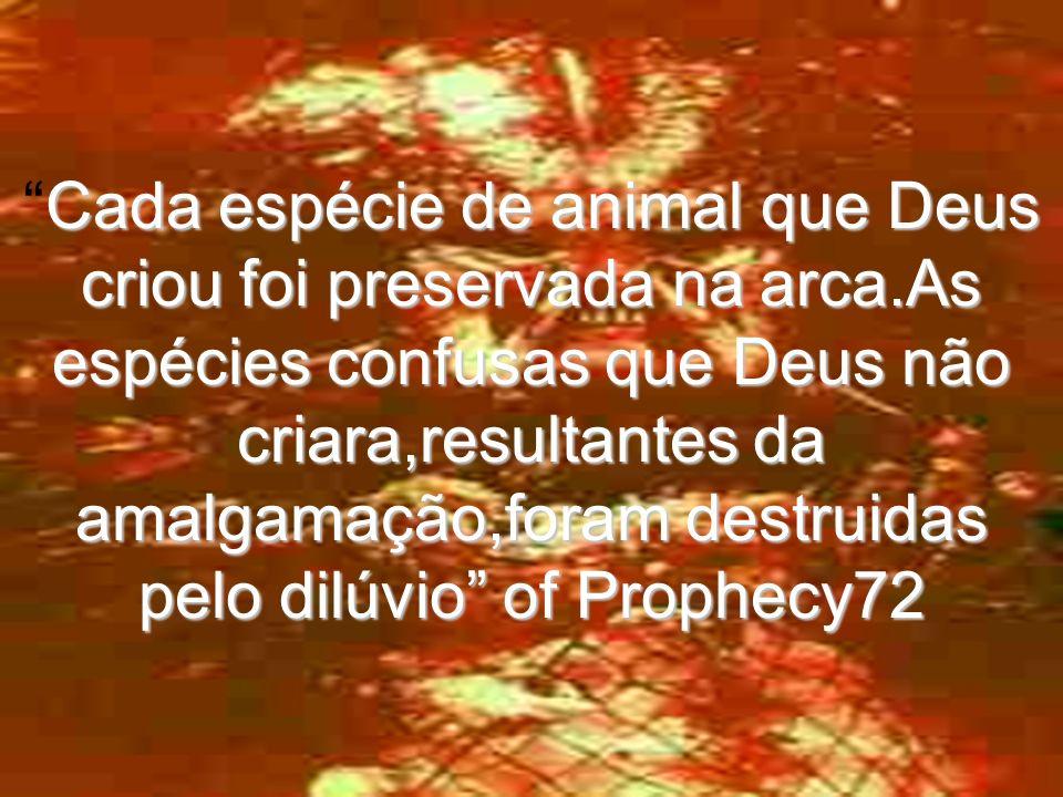 Cada espécie de animal que Deus criou foi preservada na arca.As espécies confusas que Deus não criara,resultantes da amalgamação,foram destruidas pelo