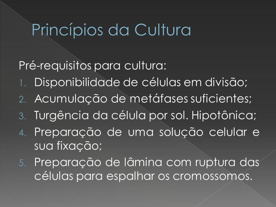 Pré-requisitos para cultura: 1. Disponibilidade de células em divisão; 2. Acumulação de metáfases suficientes; 3. Turgência da célula por sol. Hipotôn