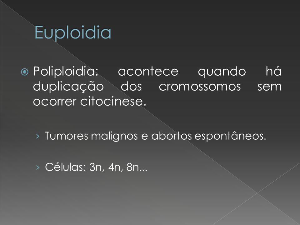 Poliploidia: acontece quando há duplicação dos cromossomos sem ocorrer citocinese. Tumores malignos e abortos espontâneos. Células: 3n, 4n, 8n...