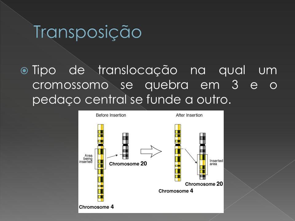 Tipo de translocação na qual um cromossomo se quebra em 3 e o pedaço central se funde a outro.