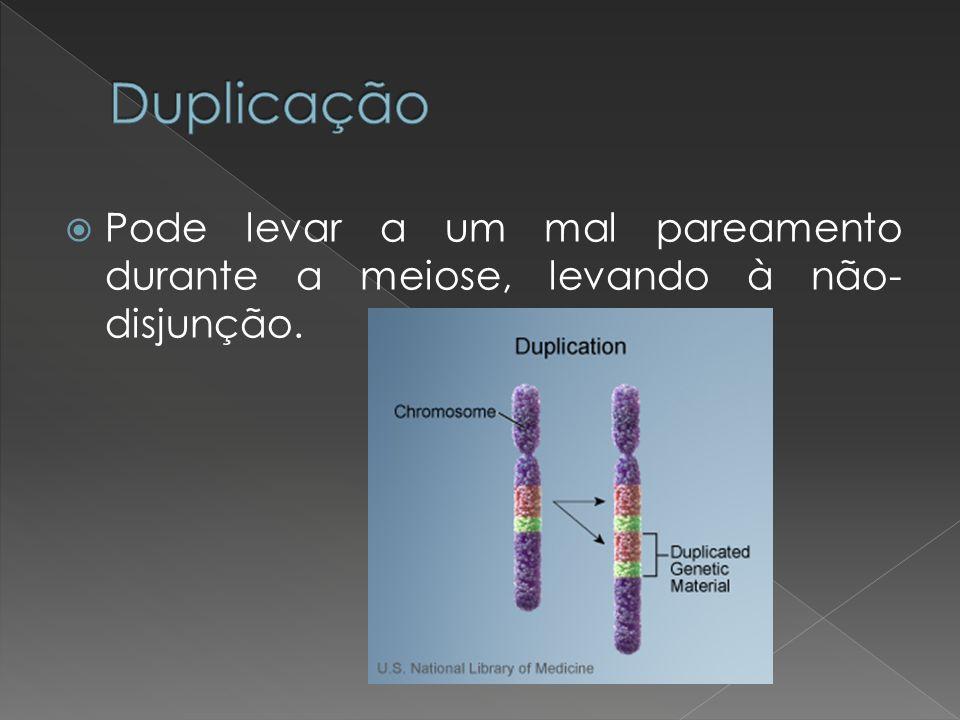 Pode levar a um mal pareamento durante a meiose, levando à não- disjunção.