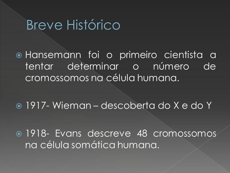 Hansemann foi o primeiro cientista a tentar determinar o número de cromossomos na célula humana. 1917- Wieman – descoberta do X e do Y 1918- Evans des