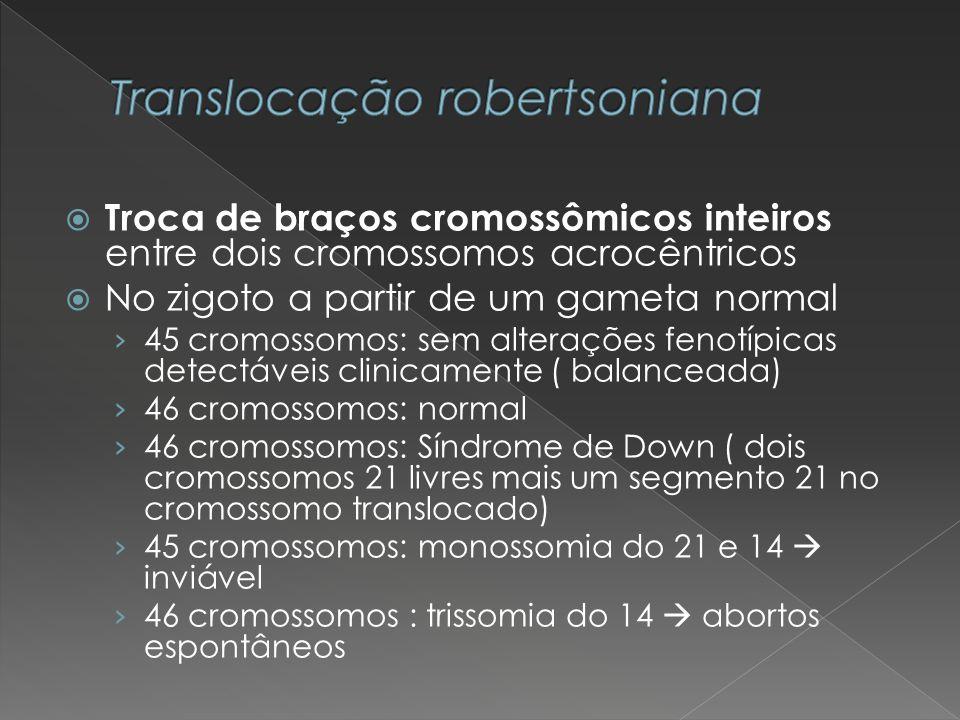 Troca de braços cromossômicos inteiros entre dois cromossomos acrocêntricos No zigoto a partir de um gameta normal 45 cromossomos: sem alterações feno