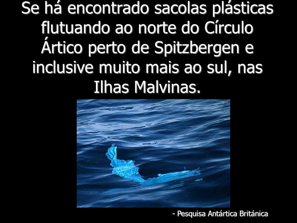 Se há encontrado sacolas plásticas flutuando ao norte do Círculo Ártico perto de Spitzbergen e inclusive muito mais ao sul, nas Ilhas Malvinas. - Pesq