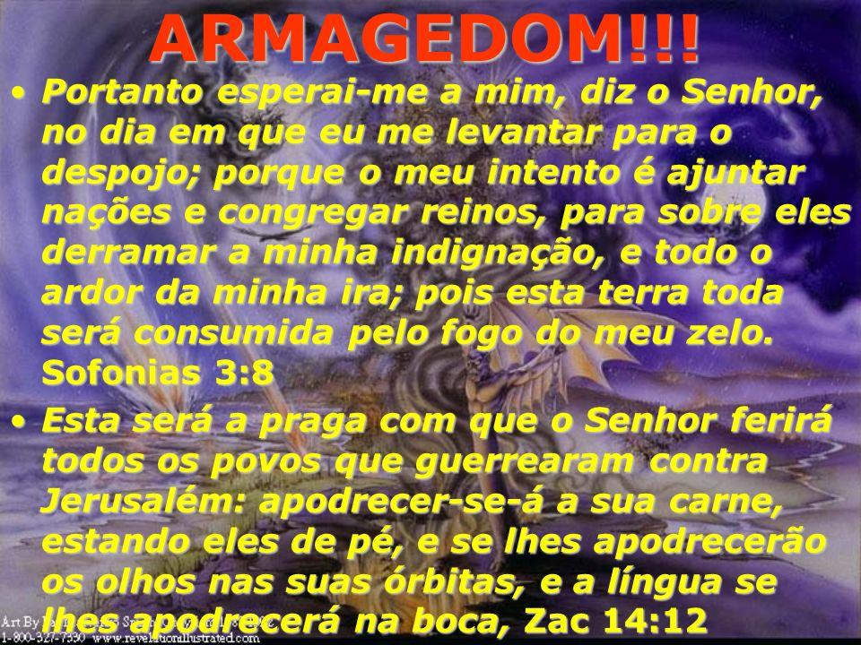 ARMAGEDOM!!! 17 E angustiarei os homens, e eles andarão como cegos, porque pecaram contra o Senhor; e o seu sangue se derramará como pó, e a sua carne