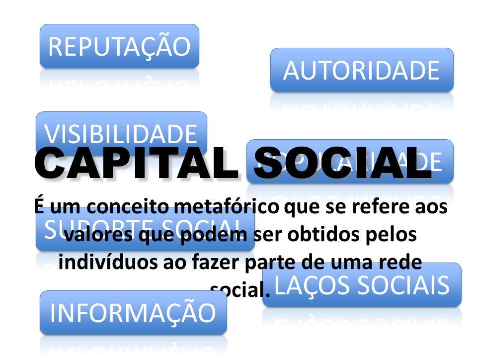CAPITAL SOCIAL É um conceito metafórico que se refere aos valores que podem ser obtidos pelos indivíduos ao fazer parte de uma rede social.