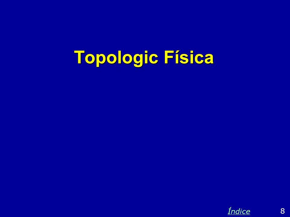 Topologic Física 8 Índice