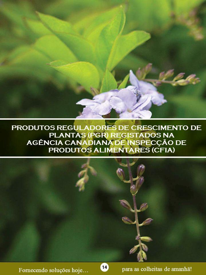 Page 14 PRODUTOS REGULADORES DE CRESCIMENTO DE PLANTAS (PGR) REGISTADOS NA AGÊNCIA CANADIANA DE INSPECÇÃO DE PRODUTOS ALIMENTARES (CFIA) Fornecendo so