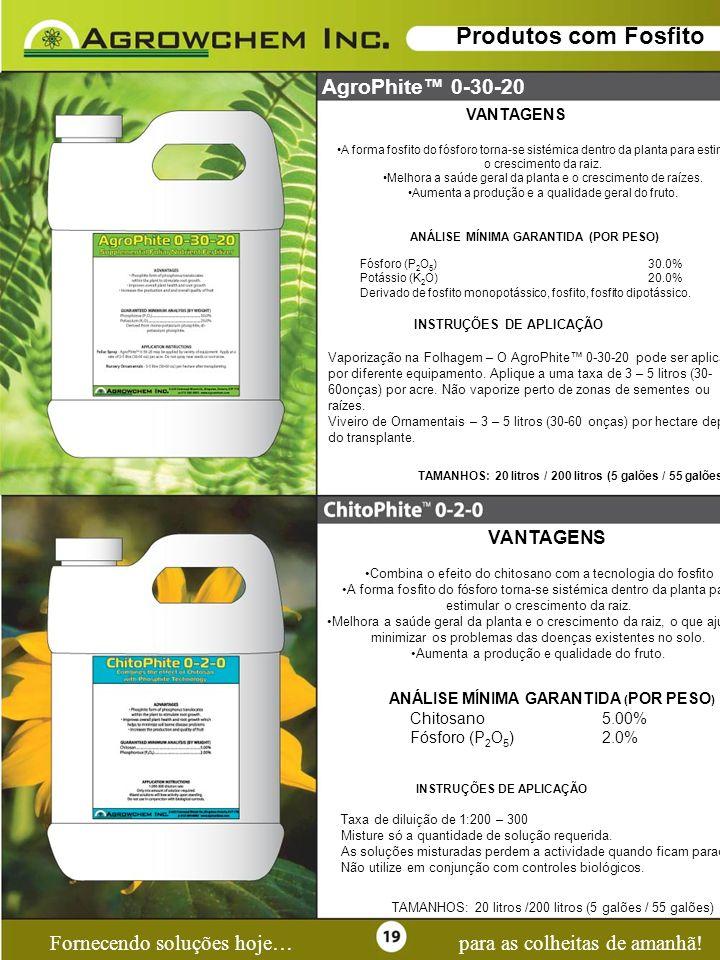 Page 19 Fornecendo soluções hoje…para as colheitas de amanhã! Produtos com Fosfito AgroPhite 0-30-20 VANTAGENS A forma fosfito do fósforo torna-se sis
