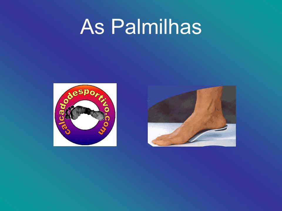 Palmilhas A maior parte das palmilhas de série dos principais fabricantes de calçado desportivo é feita de E.V.A.