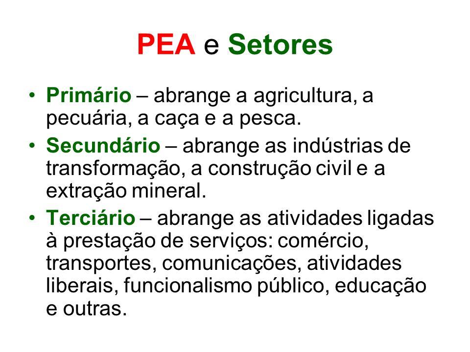 PEA e Setores Primário – abrange a agricultura, a pecuária, a caça e a pesca. Secundário – abrange as indústrias de transformação, a construção civil