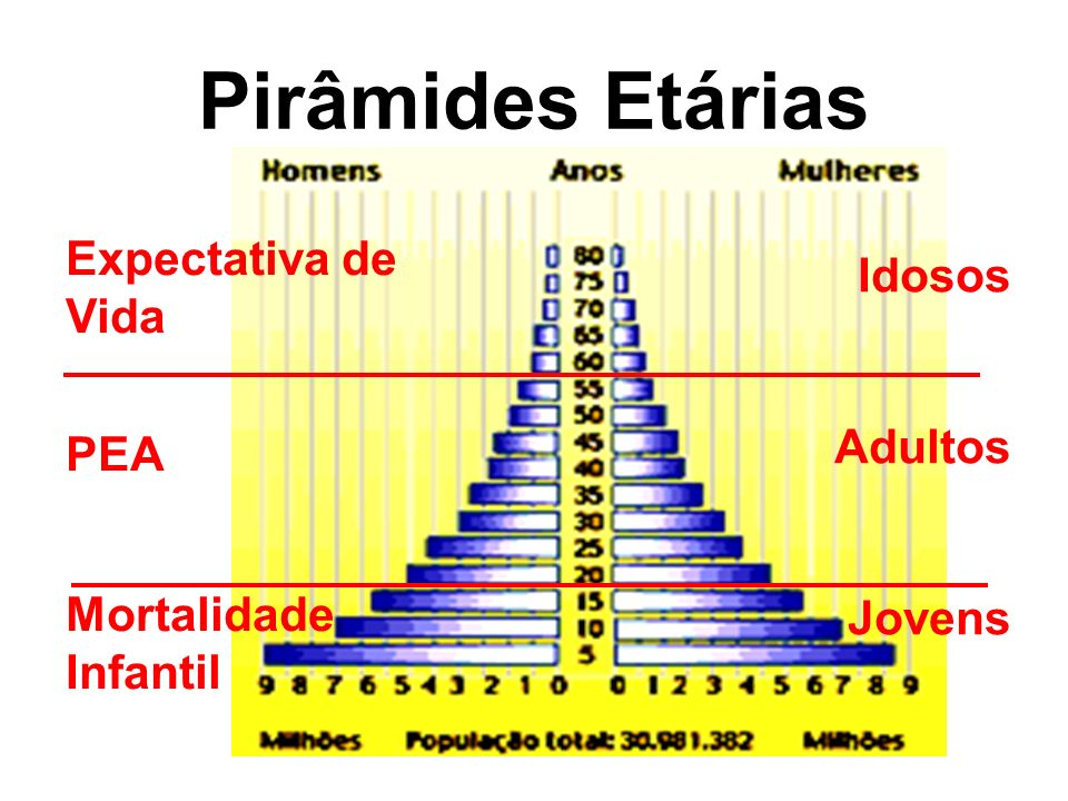 Pirâmides Etárias Idosos Adultos Jovens Expectativa de Vida PEA Mortalidade Infantil