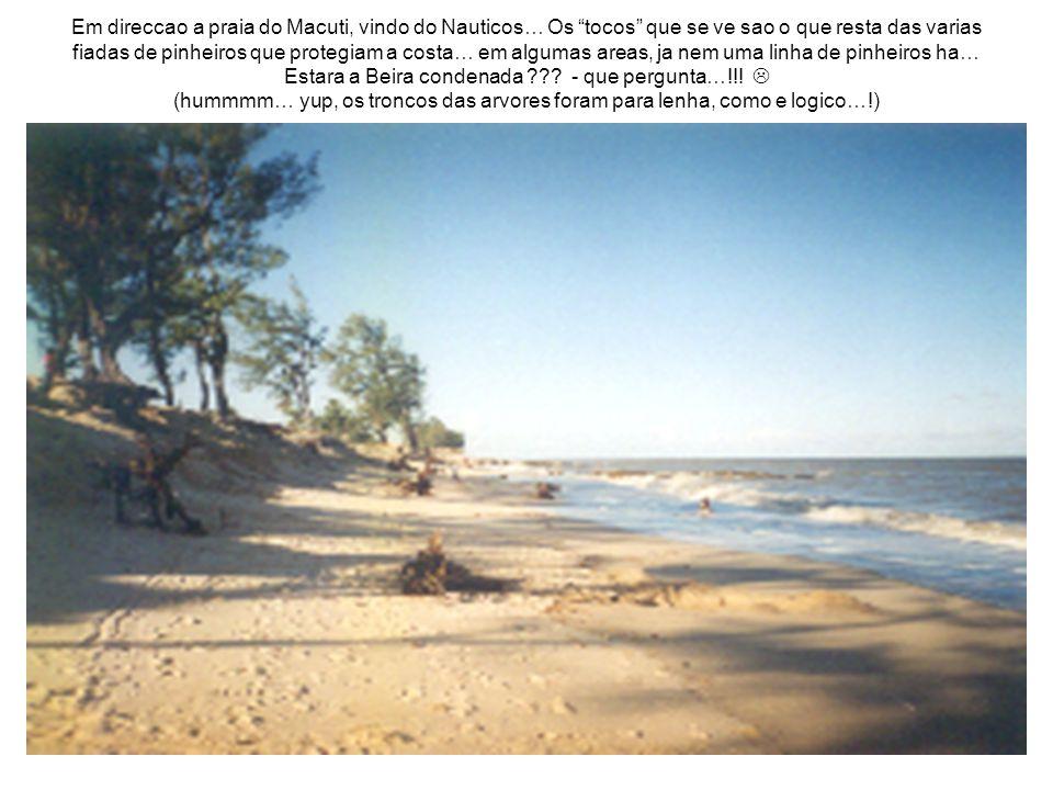 Em direccao a praia do Macuti, vindo do Nauticos… Os tocos que se ve sao o que resta das varias fiadas de pinheiros que protegiam a costa… em algumas