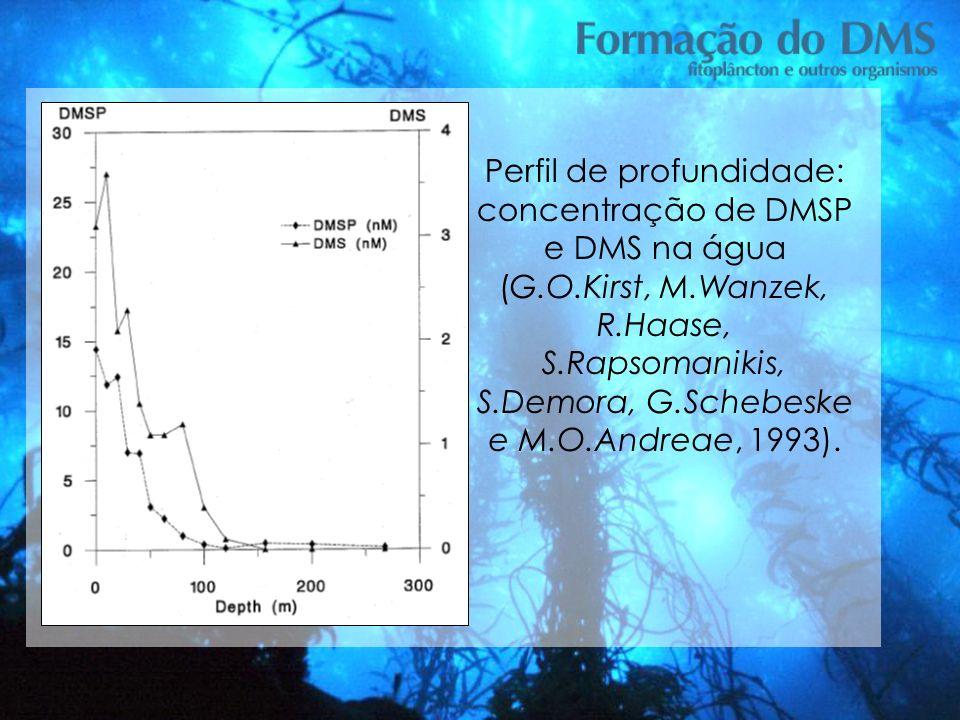 Perfil de profundidade: concentração de DMSP e DMS na água (G.O.Kirst, M.Wanzek, R.Haase, S.Rapsomanikis, S.Demora, G.Schebeske e M.O.Andreae, 1993).