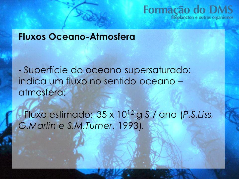 Fluxos Oceano-Atmosfera - Superfície do oceano supersaturado: indica um fluxo no sentido oceano – atmosfera; - Fluxo estimado: 35 x 10 12 g S / ano (P
