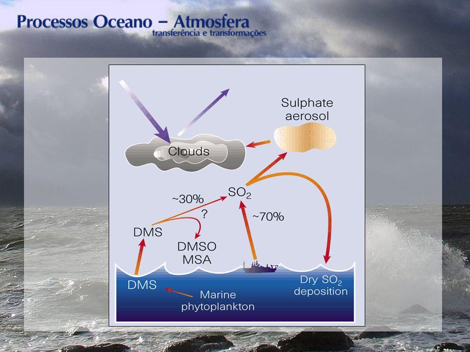 Esquema detalhado dos processos que envolvem o DMS na atmosfera.