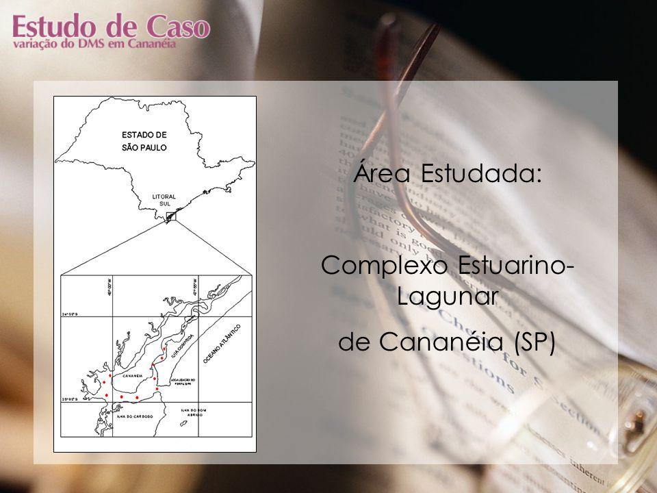 Área Estudada: Complexo Estuarino- Lagunar de Cananéia (SP)