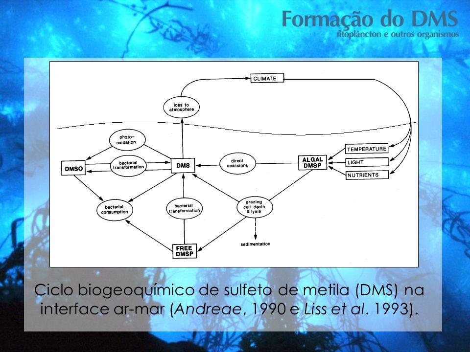 Ciclo biogeoquímico de sulfeto de metila (DMS) na interface ar-mar (Andreae, 1990 e Liss et al. 1993). Tese