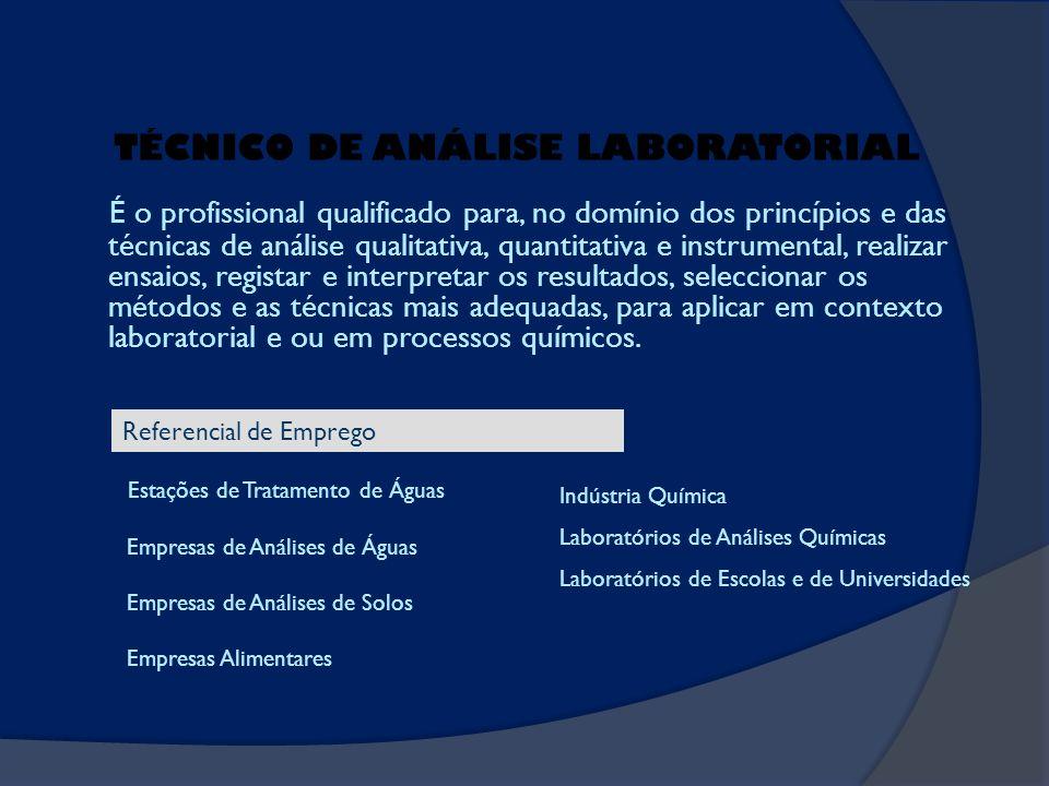 É o profissional qualificado para, no domínio dos princípios e das técnicas de análise qualitativa, quantitativa e instrumental, realizar ensaios, reg