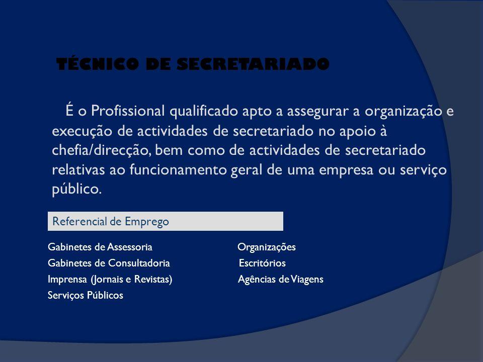 É o Profissional qualificado apto a assegurar a organização e execução de actividades de secretariado no apoio à chefia/direcção, bem como de activida