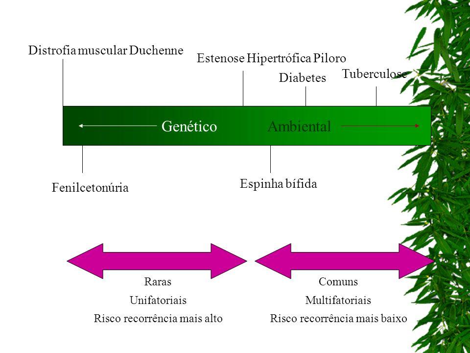GenéticoAmbiental Tuberculose Diabetes Estenose Hipertrófica Piloro Espinha bífida Comuns Multifatoriais Risco recorrência mais baixo Distrofia muscul
