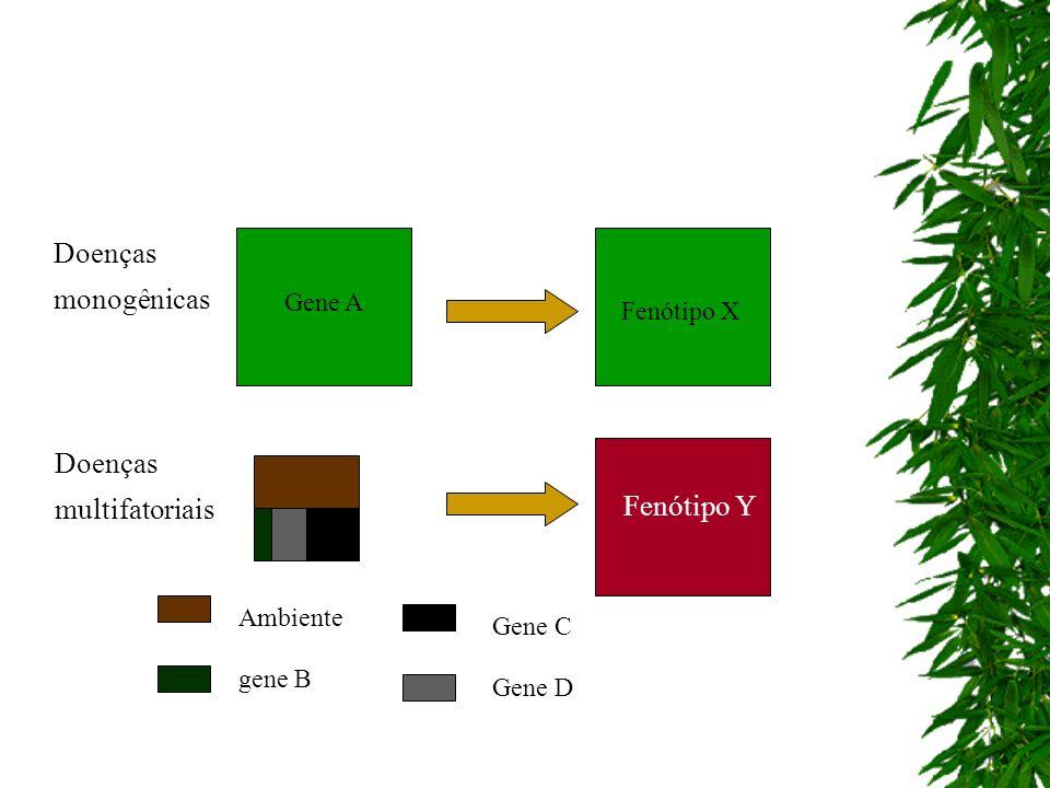 Fenótipo X Fenótipo Y Ambiente gene B Gene C Gene D Doenças monogênicas Doenças multifatoriais Gene A