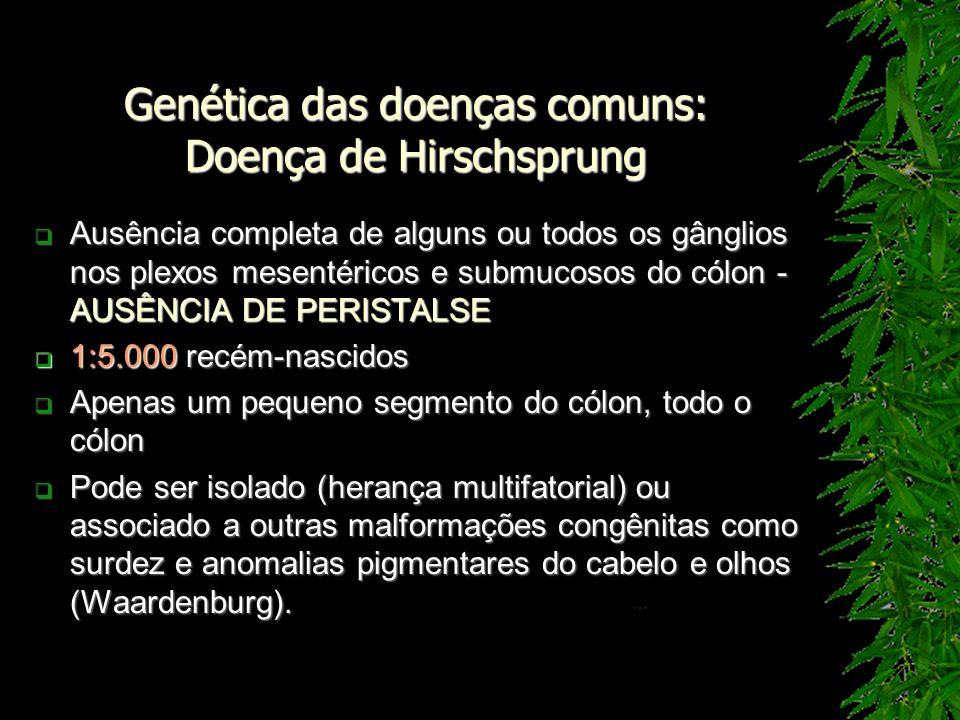 Genética das doenças comuns: Doença de Hirschsprung Ausência completa de alguns ou todos os gânglios nos plexos mesentéricos e submucosos do cólon - A