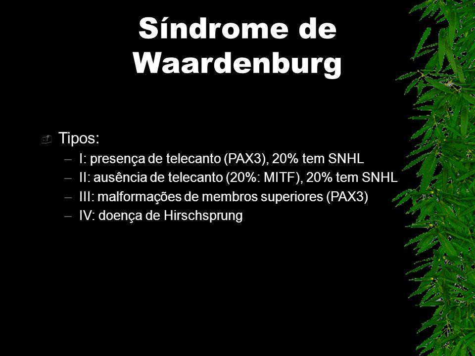 Síndrome de Waardenburg Tipos: –I: presença de telecanto (PAX3), 20% tem SNHL –II: ausência de telecanto (20%: MITF), 20% tem SNHL –III: malformações