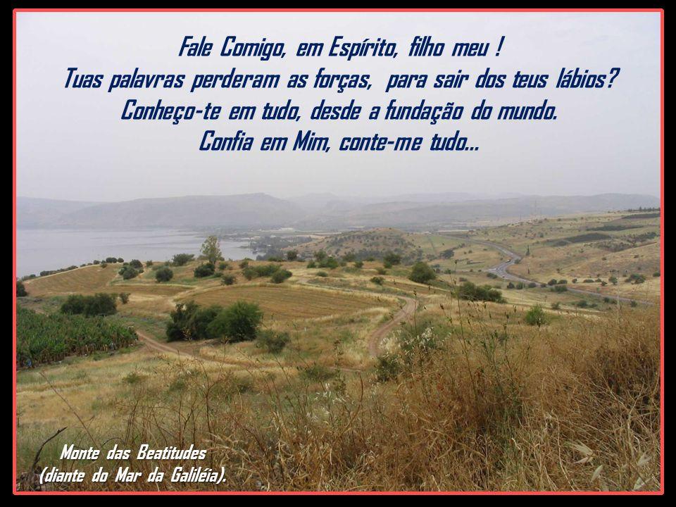 Monte das Beatitudes (diante do Mar da Galiléia).Fale Comigo, em Espírito, filho meu .