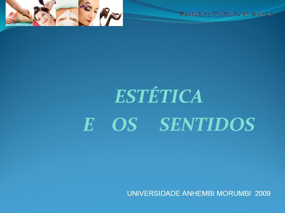 Escola de Terapias de Beleza ESTÉTICA E OS SENTIDOS UNIVERSIDADE ANHEMBI MORUMBI 2009
