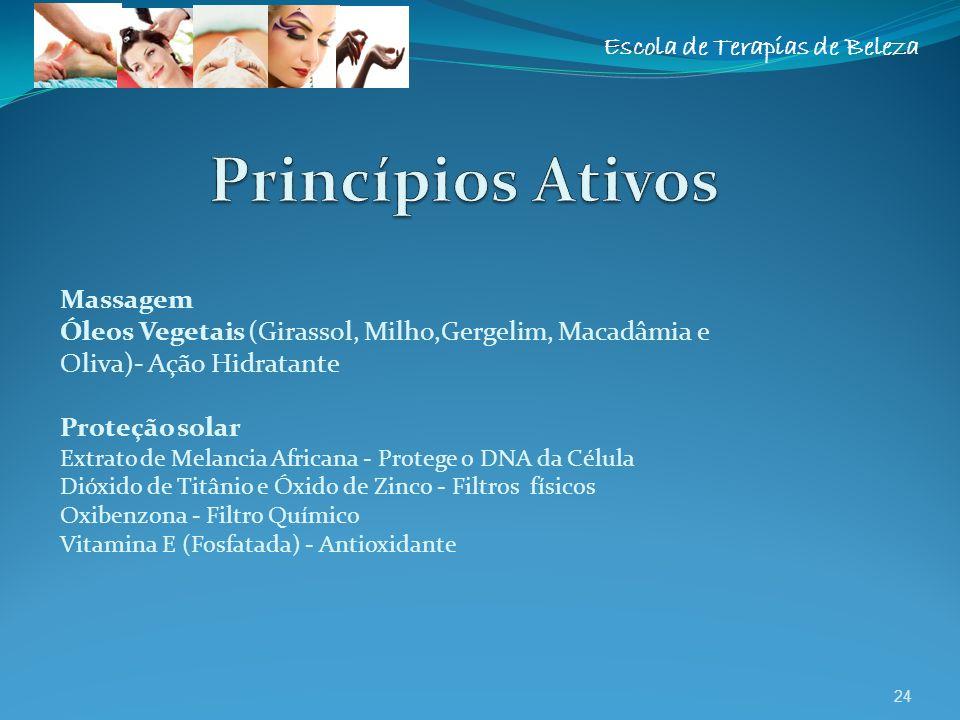 Escola de Terapias de Beleza Massagem Óleos Vegetais (Girassol, Milho,Gergelim, Macadâmia e Oliva)- Ação Hidratante Proteção solar Extrato de Melancia