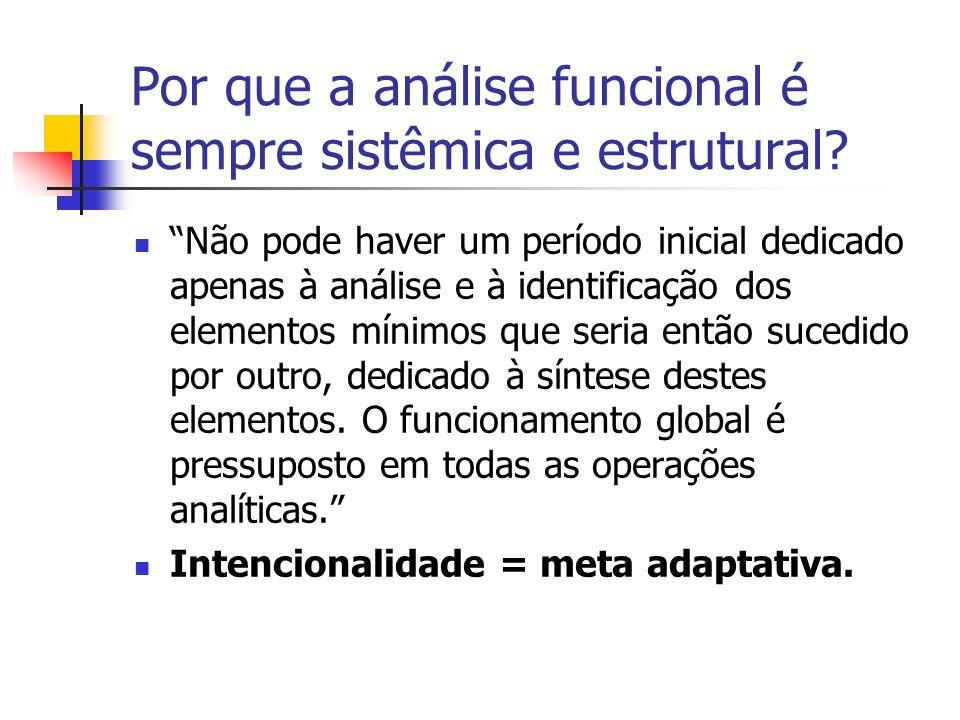 Por que a análise funcional é sempre sistêmica e estrutural? Não pode haver um período inicial dedicado apenas à análise e à identificação dos element