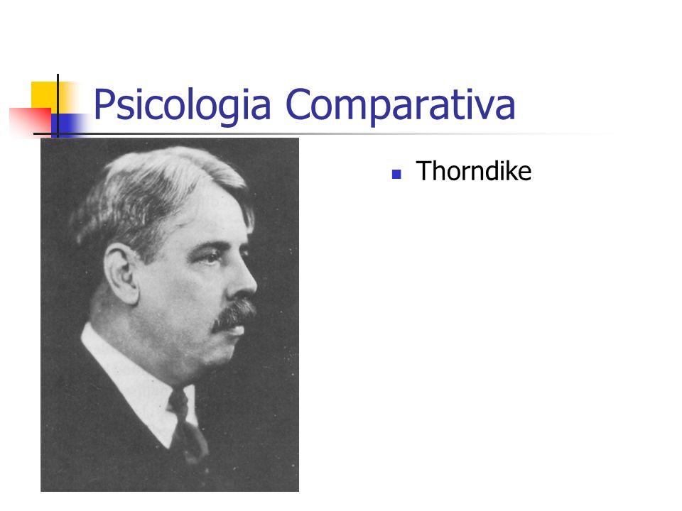 Psicologia Comparativa Thorndike