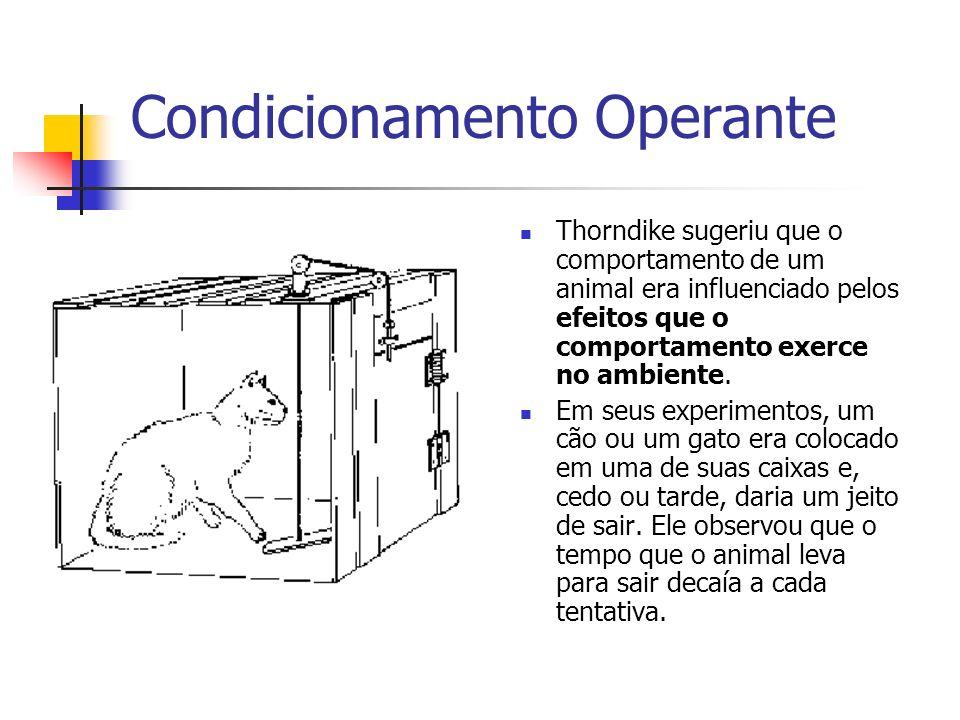 Condicionamento Operante Thorndike sugeriu que o comportamento de um animal era influenciado pelos efeitos que o comportamento exerce no ambiente. Em