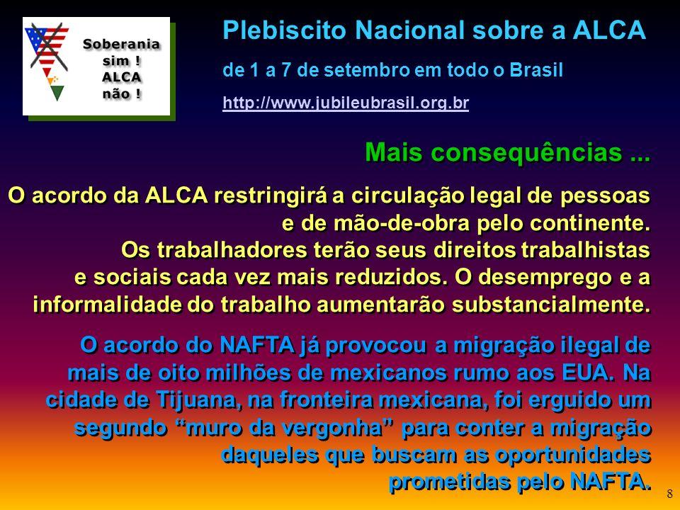 7 Mais consequências... O acordo da ALCA aprofundará o domínio da biotecnologia e a tentativa de impor sementes transgênicas na agricultura por parte