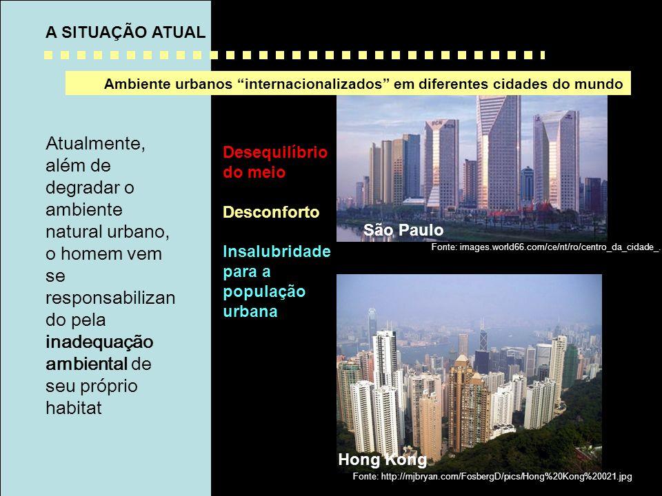 São Paulo -Brasil Atualmente, além de degradar o ambiente natural urbano, o homem vem se responsabilizan do pela inadequação ambiental de seu próprio