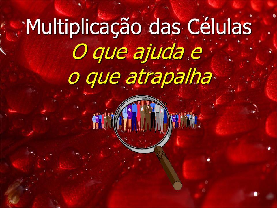 Multiplicação das Células O que ajuda e o que atrapalha