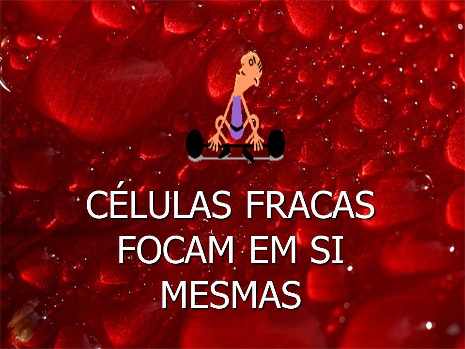 CÉLULAS FRACAS FOCAM EM SI MESMAS