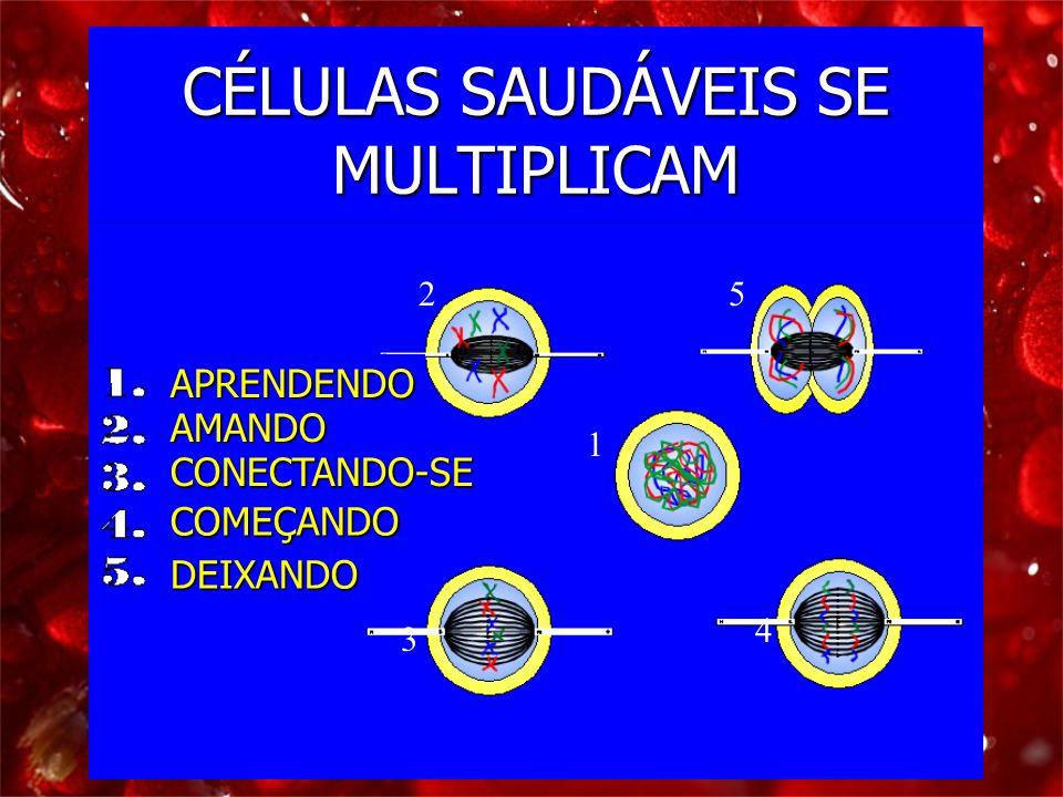 CÉLULAS SAUDÁVEIS SE MULTIPLICAM 1 2 3 4 5 APRENDENDO AMANDO CONECTANDO-SE COMEÇANDO DEIXANDO